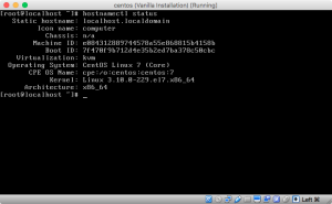 Screenshot of hostnamectl with the default hostname localhost.localdomain