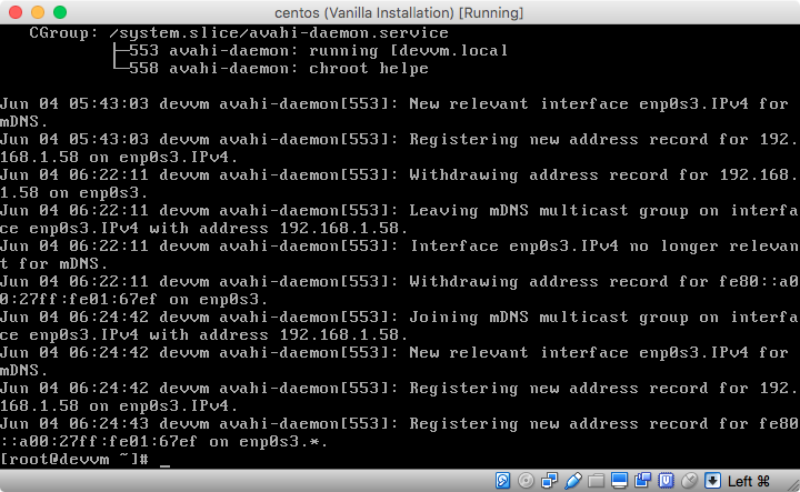 Setting up a hostname and Avah...